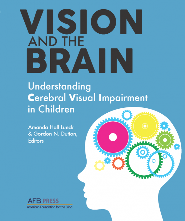 Vision and the Brain book cover