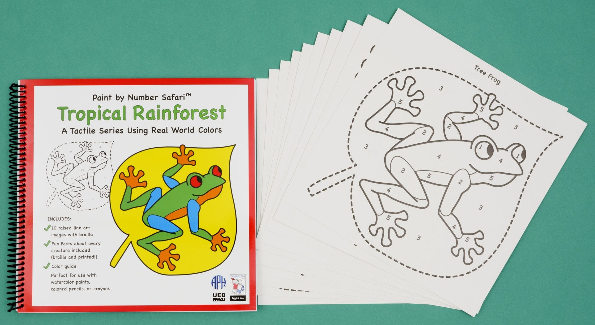 Cover of Tropical Rainforest book and examples of raised line drawing of a frog
