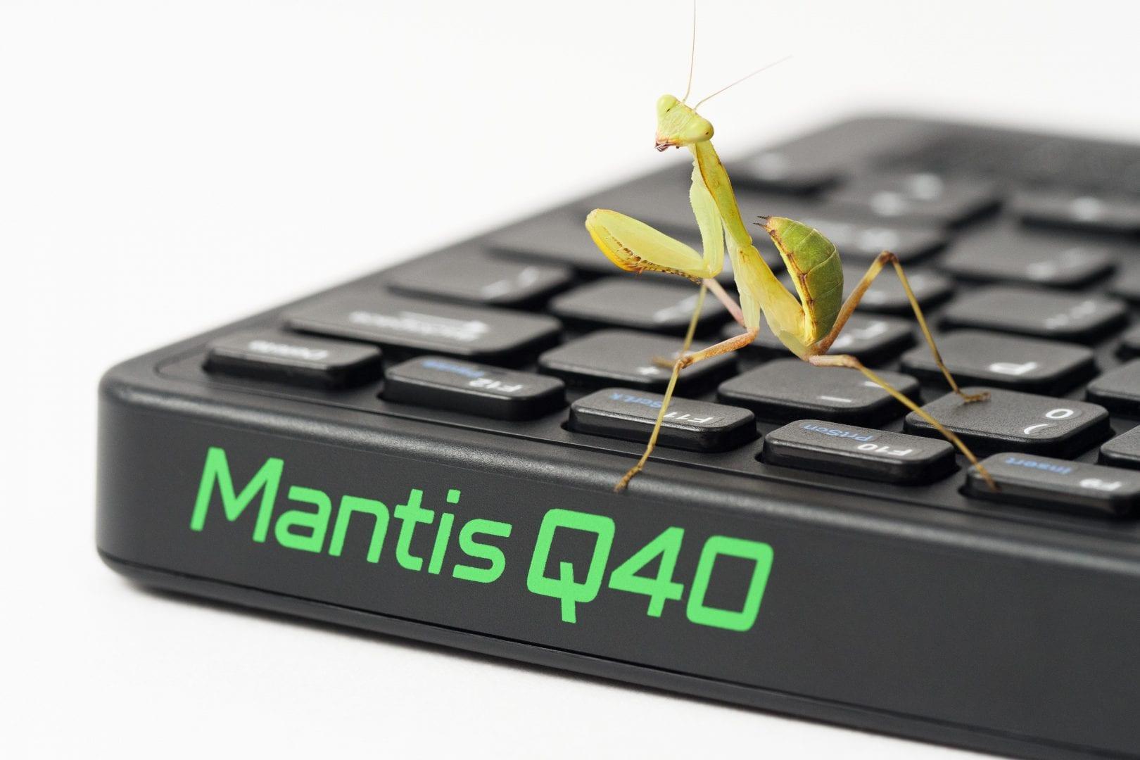 Praying Mantis sitting on Mantis keyboard