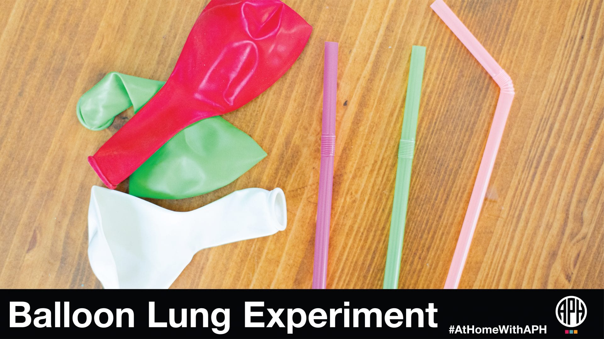 "ballons and plastic straws on a table top. text reads ""Balloon Lung Experiment #AtHomeWithAPH"""