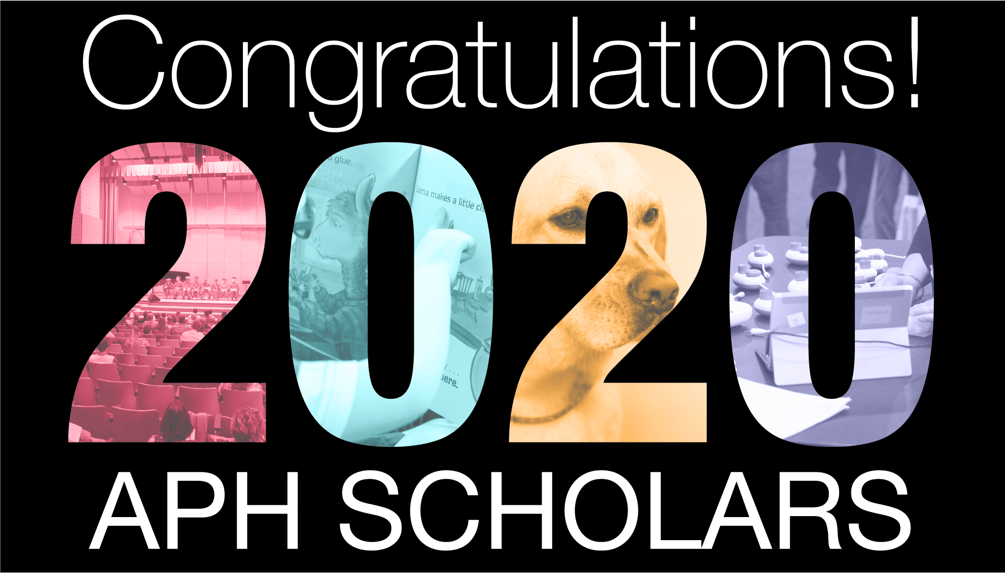 """text reads """"congratulations 2020 APH Scholars"""" and the numbers of 2020 are made of branded colored images from the field including products and a guide dog"""