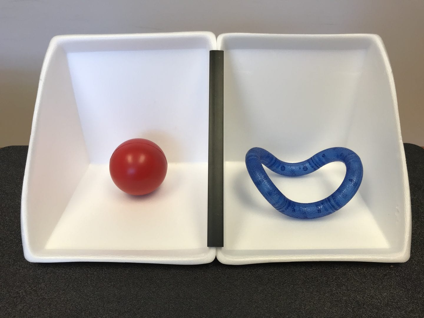 Two APH Expandable Calendar Boxes set up as Now and Next Schedule. Boxes are white with black divider. Now box holds a red ball and next box holds an APH textured blue Tangle Toy.