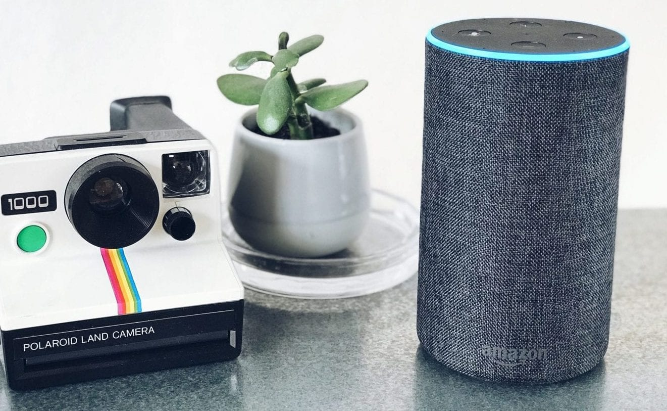 an amazon echo smart speaker on a table next to a plant and a vintage polaroid camera