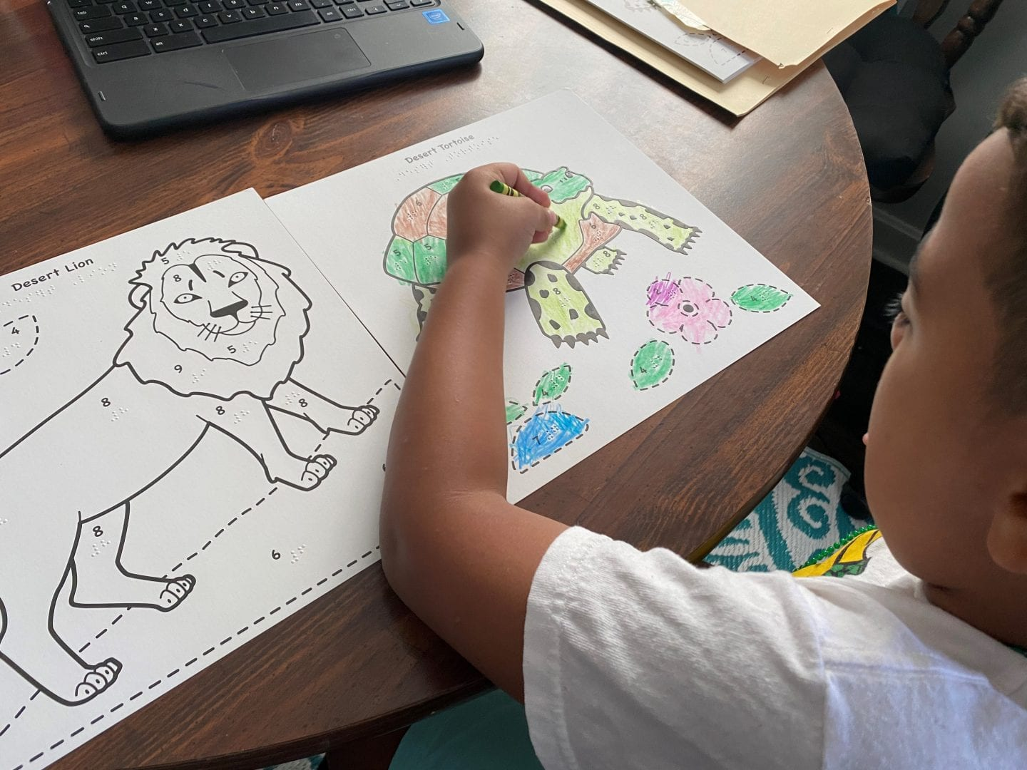 a young child sitting at a table coloring the black outlined tactile picture of a tortoise. A coloring page of a lion sits on the table beside him.