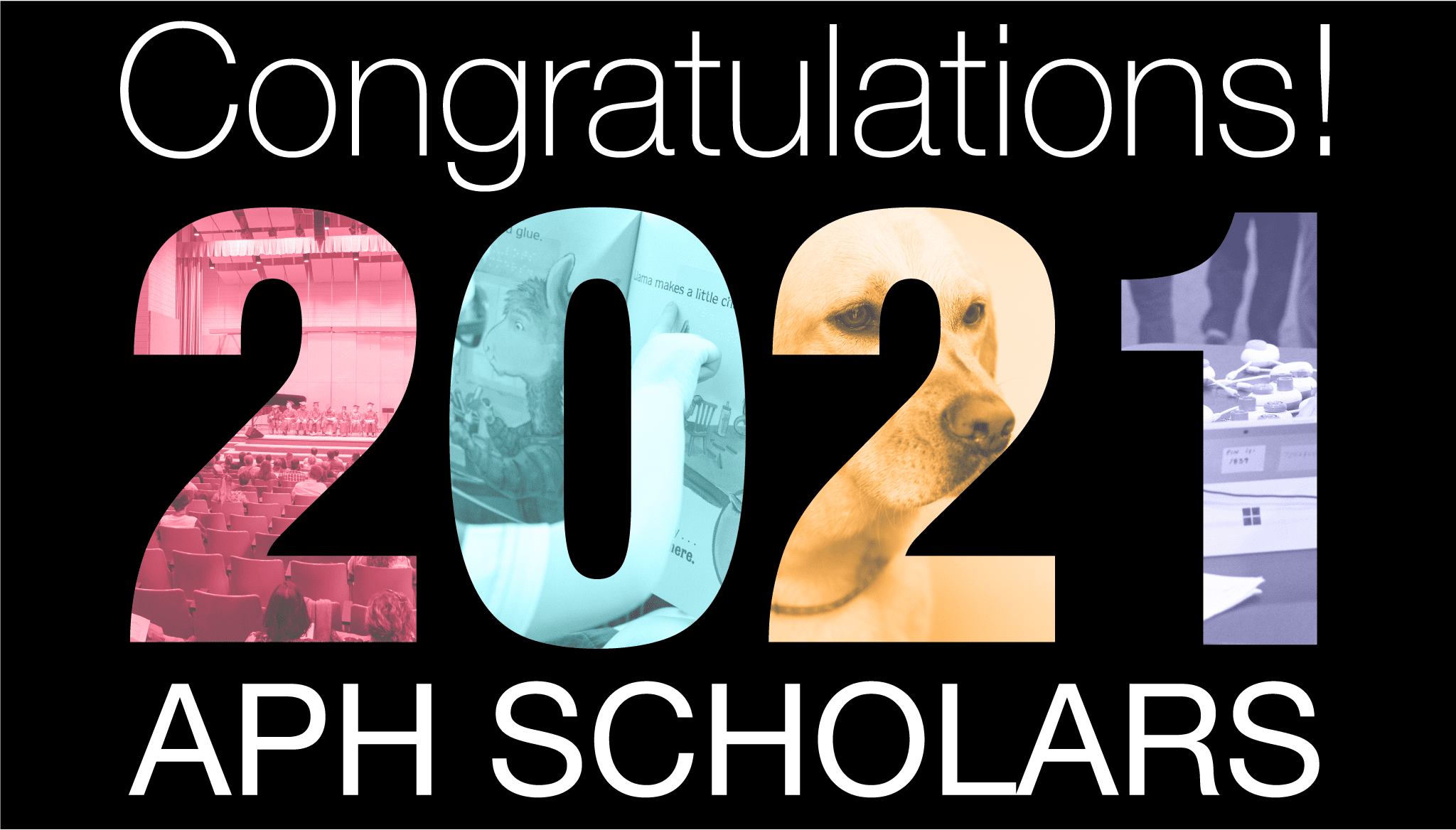 """text reads """"congratulations 2021 APH Scholars"""" and the numbers of 2021 are made of branded colored images from the field including products and a guide dog"""