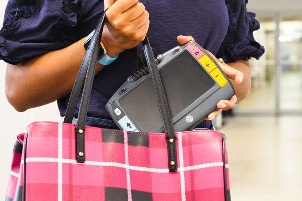 Juno being placed in a handbag