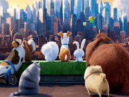 Universal Studios Hollywood Secret Life of Pets New Ride 2020