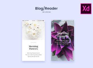 Free Blog Reader Screens UI
