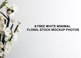 8 Free White Minimal Floral Stock Mockup Photos