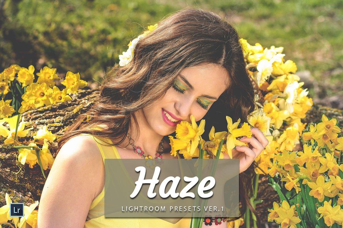 Free Haze Lightroom Presets