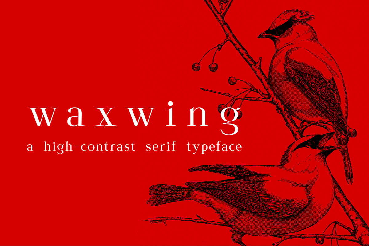 Free Waxwing Serif Font