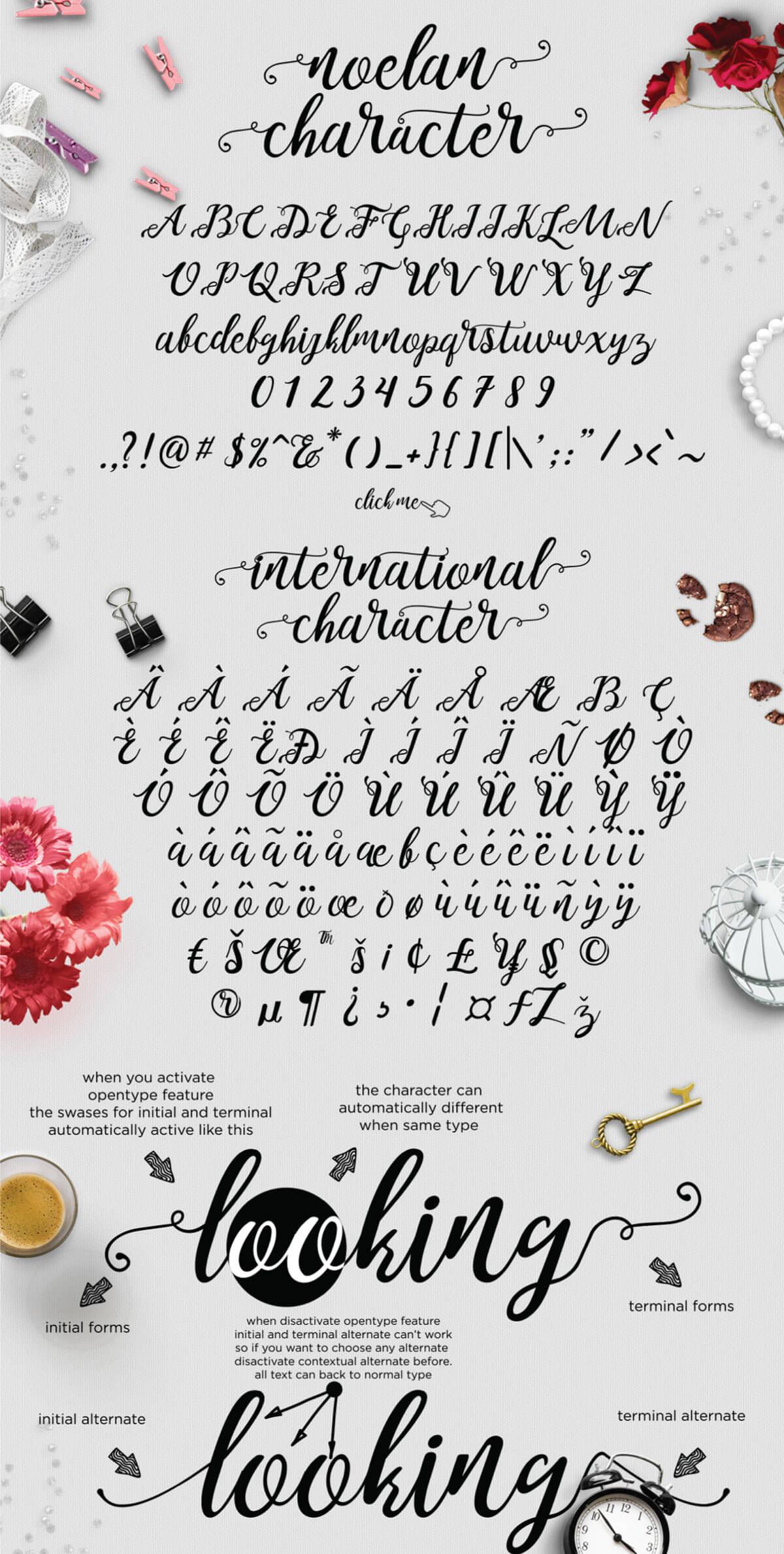 Free Noelan Script Font