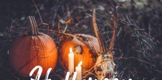 Free Halloween Lightroom Presets