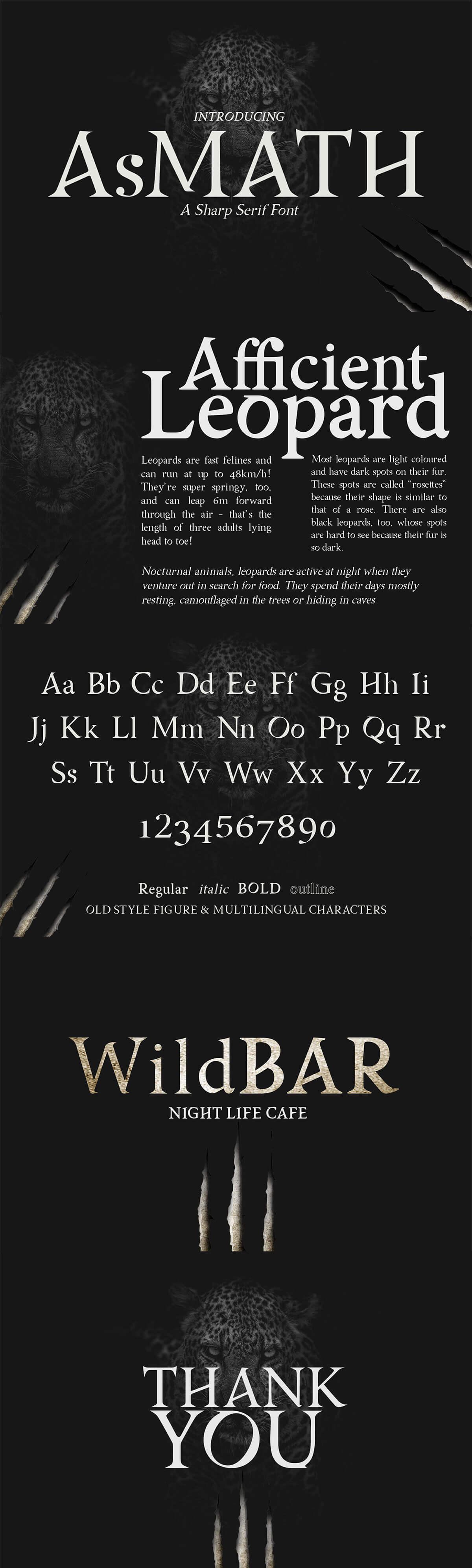 Free Asmath Serif Font