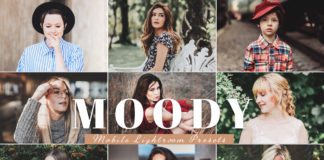 Free Moody Mobile Lightroom Presets