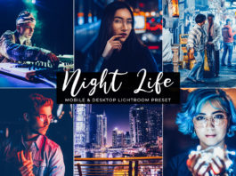 Free Night Life Lightroom Preset