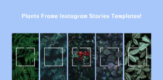 Free Plants Frame Instagram Stories Templates