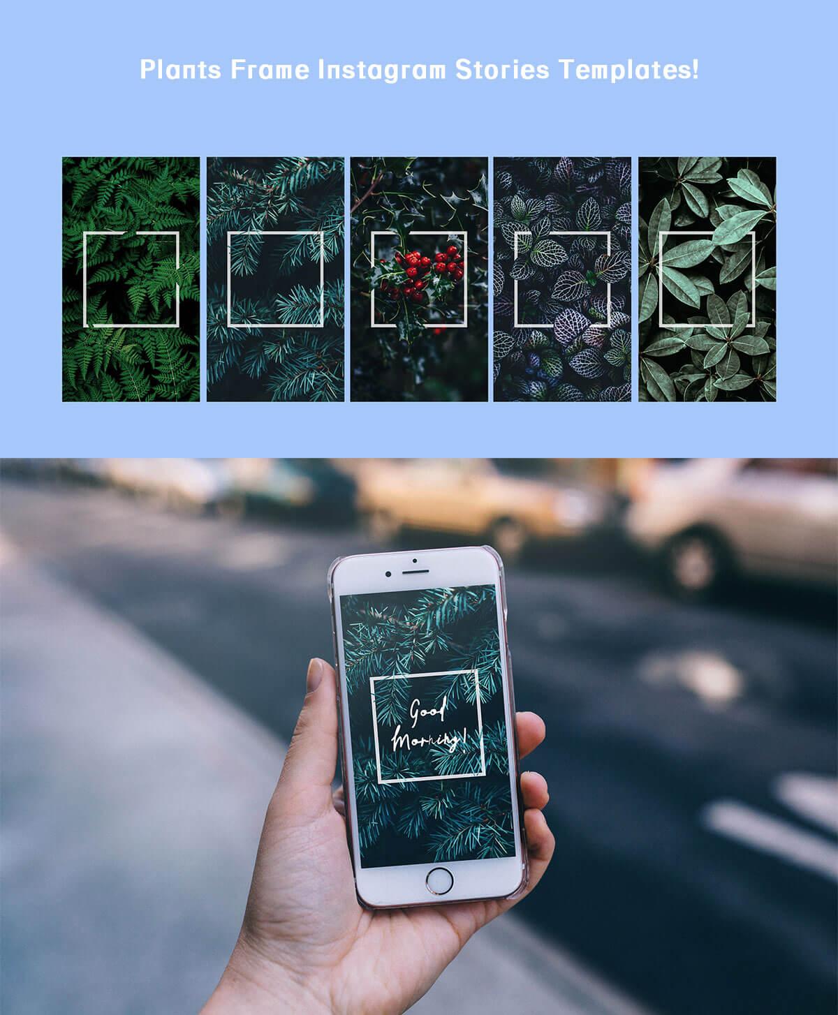 Free Plants Frame Instagram Stories Templates