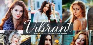 Free Vibrant Lightroom Preset