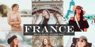Free France Lightroom Preset
