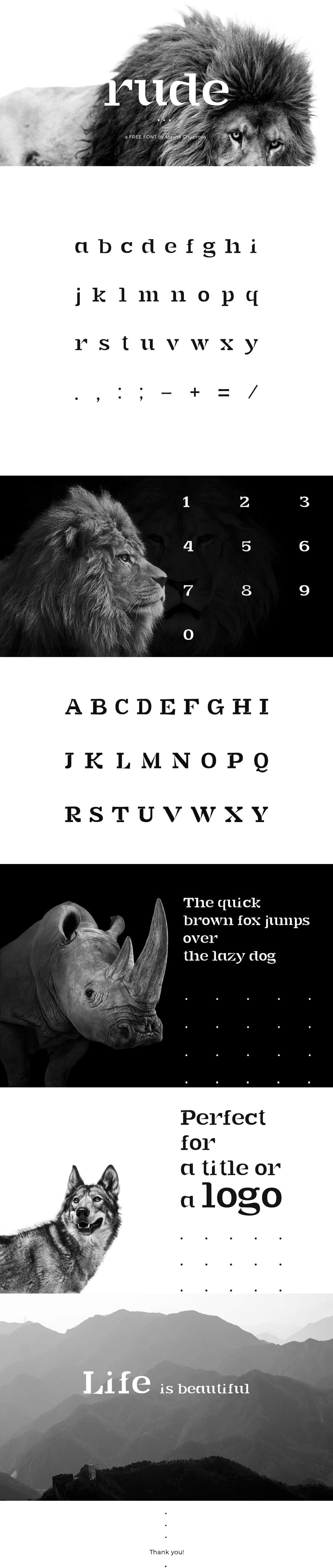 Free Rude Slab Serif Font