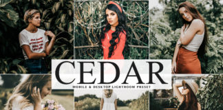 Free Cedar Lightroom Preset