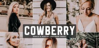 Free Cowberry Lightroom Preset