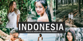 Free Indonesia Lightroom Preset