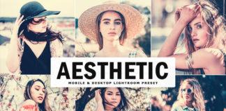 Free Aesthetic Lightroom Preset