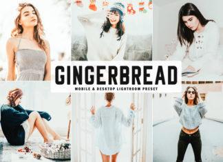 Free Gingerbread Lightroom Preset