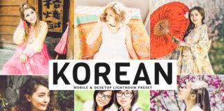 Free Korean Lightroom Preset