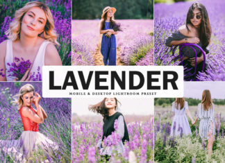 Free Lavender Lightroom Preset