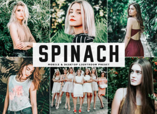 Free Spinach Lightroom Preset