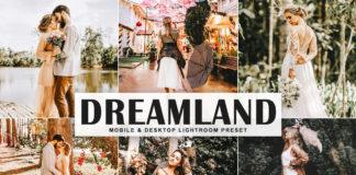 Free Dreamland Lightroom Preset
