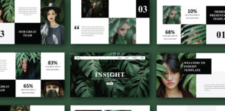 Free Insight Presentation Template