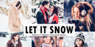 Free Let It Snow Lightroom Preset