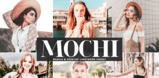 Free Mochi Lightroom Preset