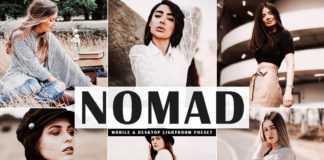 Free Nomad Lightroom Preset