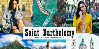 Free Saint Barthelemy Lightroom Preset