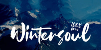 Free Wintersoul Handbrush Script Font