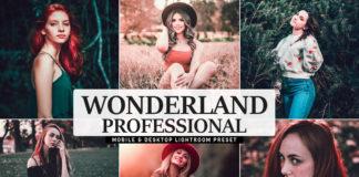 Free Wonderland Pro Lightroom Preset