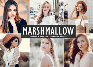 Free Marshmallow Lightroom Preset