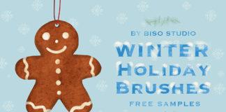 Free Winter Holiday Brushes Procreate
