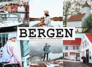 Free Bergen Lightroom Preset