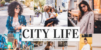 Free City Life Lightroom Preset