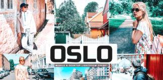 Free Oslo Lightroom Preset
