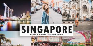 Free Singapore Lightroom Preset