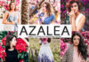 Free Azalea Lightroom Preset