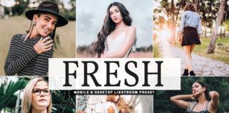Free Fresh Lightroom Preset