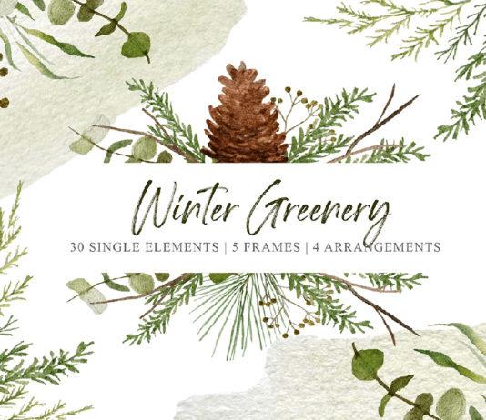 Free Winter Greenery Clipart Set